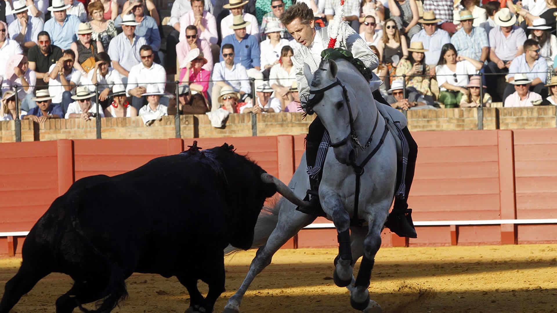 Pablo Hermoso de Mendoza   Actuaciones de un torero a